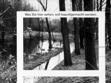 Installation für die Bürgerinitiative gegen die Zerstörung des Naturschutzgebietes Lauvenburg, Kaarst 1981